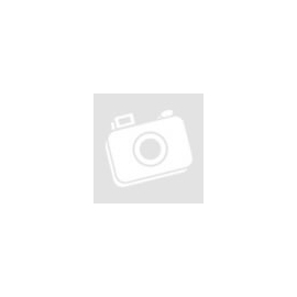 Harry Potter and the Goblet of Fire (használt Nintendo DS játék)